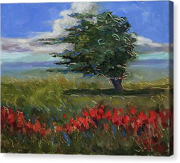 Wyoming Gentle Breeze Canvas Print by Billie Colson