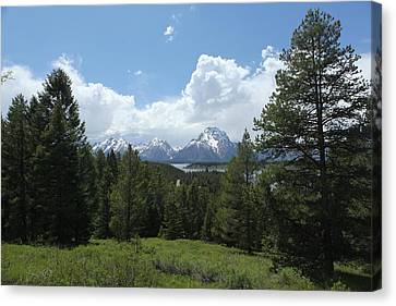 Wyoming 6500 Canvas Print by Michael Fryd
