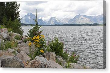 Wyoming Mountains Canvas Print by Diane Bohna