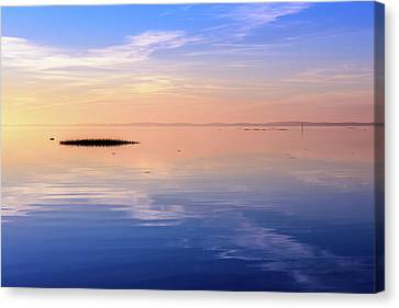 Canvas Print featuring the photograph Xtra Blue by Thierry Bouriat