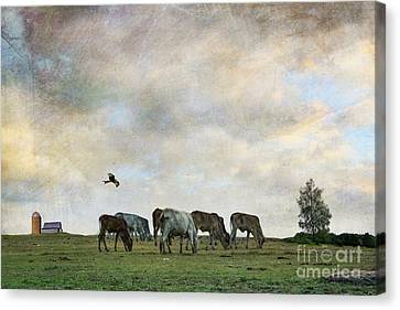 Artography Canvas Print - Xtra Lbs Look Good On You by AJ Yoder