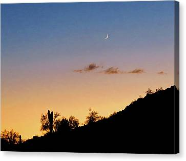 Y Cactus Sunset Moonrise Canvas Print