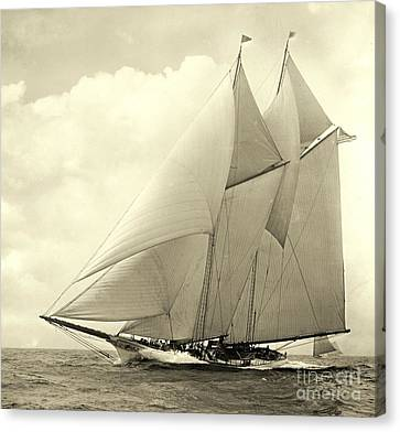 Yacht America 1910 Canvas Print by Padre Art