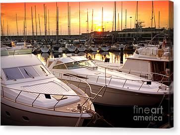 Yacht Marina Canvas Print by Carlos Caetano
