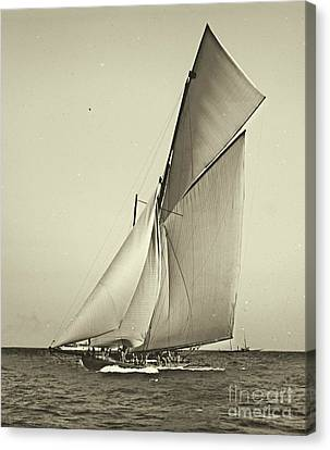Yacht Shamrock Racing Americas Cup 1899 Canvas Print by Padre Art