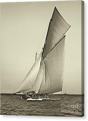 Yacht Shamrock Racing Americas Cup 1899 Canvas Print