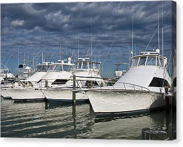 Yachts At The Dock Canvas Print