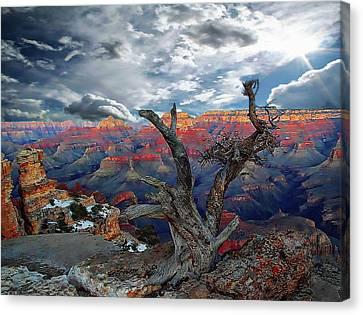 Yaki Point Grand Canyon Canvas Print by Anthony Dezenzio