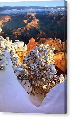 Yaki Point Snowscape Canvas Print