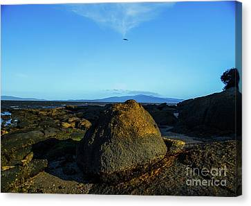 Canvas Print featuring the photograph Yanakie Rocks by Angela DeFrias
