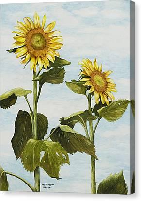 Yana's Sunflowers Canvas Print