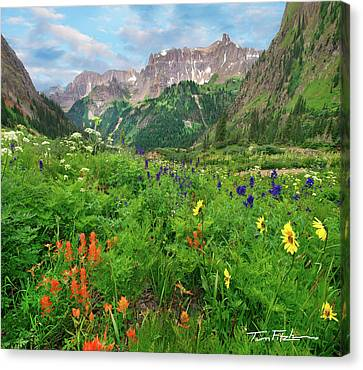 Yankee Boy Basin Canvas Print