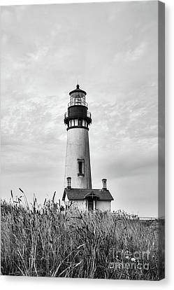 Yaquina Head Light - Bw Canvas Print