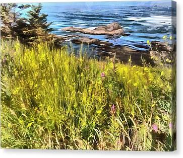 Yaquina Head Wildflowers Canvas Print