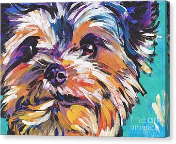 Yay Yorkie  Canvas Print by Lea S