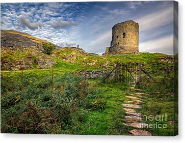 Ye Olde Path  Canvas Print by Adrian Evans