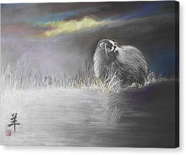 Canvas Print featuring the painting Sheep by Alan Kirkland-Roath