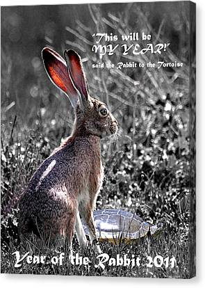 Year Of The Rabbit 2011 . Vertical Bw Canvas Print by Wingsdomain Art and Photography