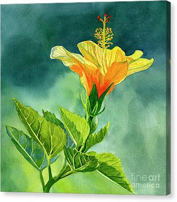 Hibiscus Canvas Print - Yellow And Gold Hibiscus With Background Color by Sharon Freeman