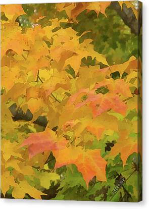 Canvas Print featuring the photograph Yellow And Green Fall Leaves by Michael Flood