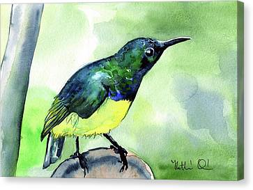 Canvas Print featuring the painting Yellow Bellied Sunbird by Dora Hathazi Mendes