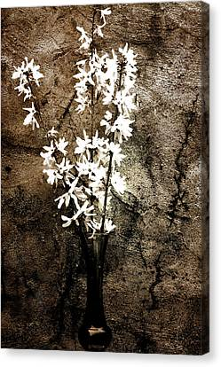 Canvas Print featuring the photograph Yellow Bells by Gray  Artus