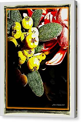 Canvas Print featuring the photograph Yellow Berries by Joan  Minchak