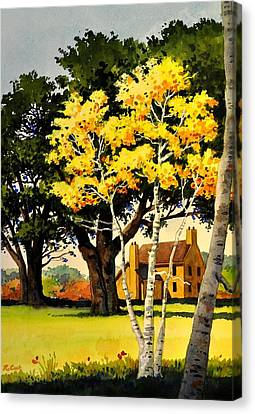 Yellow Birches Canvas Print by Robert W Cook
