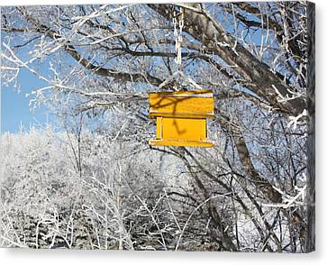 Canvas Print featuring the photograph Yellow Bird House by Pat Purdy