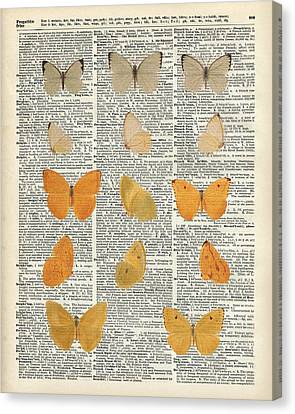 Yellow Butterflies Over Dictionary Book Page Canvas Print by Jacob Kuch
