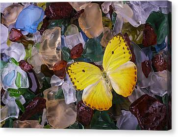Yellow Butterfly On Sea Glass Canvas Print by Garry Gay