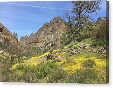 Canvas Print featuring the photograph Yellow Carpet by Art Block Collections