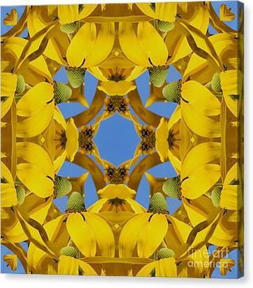 Canvas Print featuring the photograph Yellow Coneflower Kaleidoscope by Smilin Eyes  Treasures