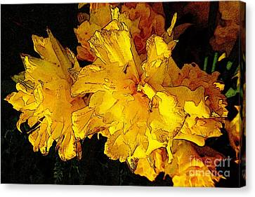 Yellow Daffodils 4 Canvas Print by Jean Bernard Roussilhe
