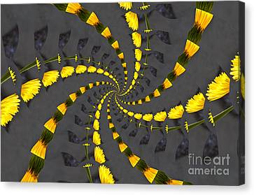 Yellow Daisy Spin Wheel  Canvas Print