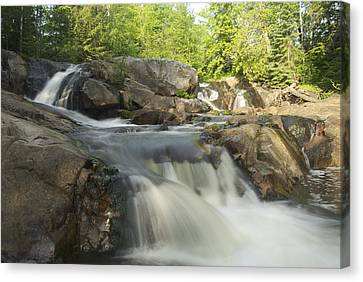 Yellow Dog Falls 3 Canvas Print by Michael Peychich