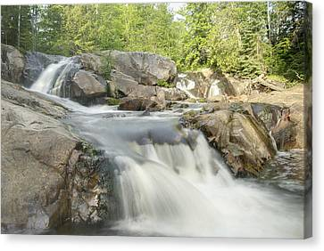 Yellow Dog Falls 4234 Canvas Print by Michael Peychich