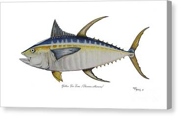 Yellow Fin Tuna Canvas Print by Ted Reeves