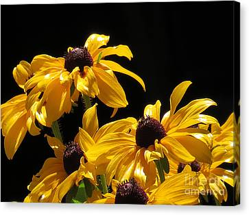 Yellow Flower 2 Canvas Print