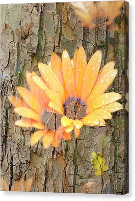 Canvas Print featuring the photograph Yellow Flower Bark by Amanda Eberly-Kudamik