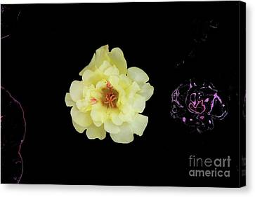 Canvas Print - Yellow Flower by Nu Art