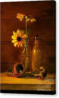 Yellow Flower Still Life Canvas Print by Sandra Cunningham