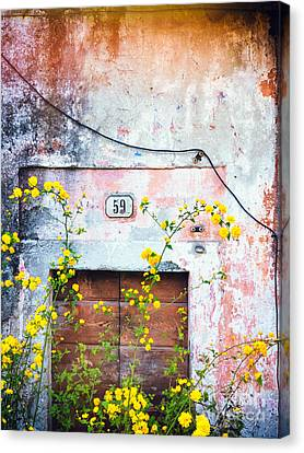 Yellow Flowers And Decayed Wall Canvas Print
