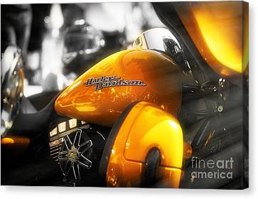 Yellow Harley Canvas Print by Stefano Senise