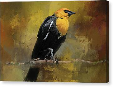 Canvas Print featuring the photograph Yellow-headed Blackbird by Donna Kennedy