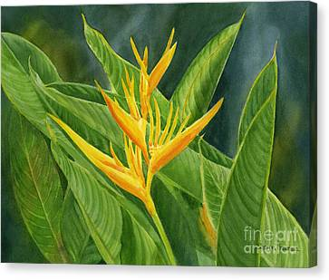 Yellow Heliconia Paradise With Leaves Canvas Print by Sharon Freeman