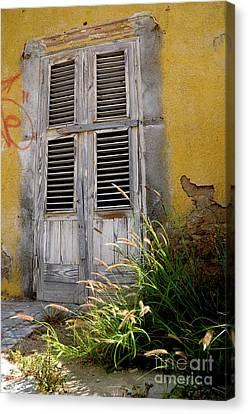Yellow Garden Canvas Print by Jorge Erick Ramos