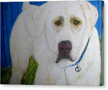 Canvas Print featuring the painting Yellow Labrador Retriever Original Acrylic Painting by Barbara Giordano