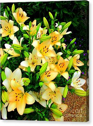 Canvas Print featuring the photograph Yellow Lilies 2 by Randall Weidner