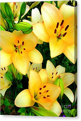 Canvas Print featuring the photograph Yellow Lilies 3 by Randall Weidner